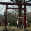 天河弁財天さまの分霊が祀られる福寿弁財天 神奈川県の画像