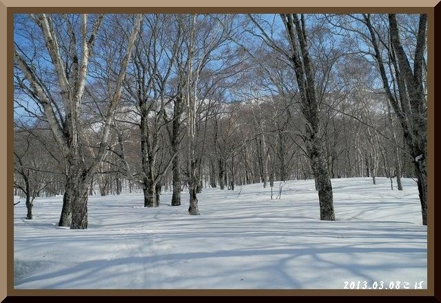 ロフトで綴る山と山スキー-0308_0934