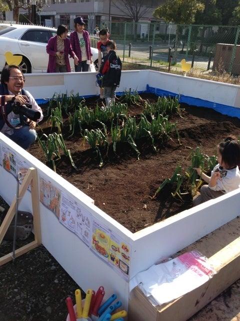 農業+web=笑顔@ようこそ収穫の里 ママファーム藤本のブログへ-image