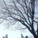 春はダイヤ改正の時期ー西鉄バス編。の記事より