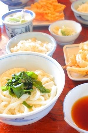 Tea-Lover's Photo Diary-ゆるかわフォトツアー