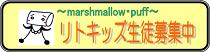 「マシュマロ・パフ」~市川市本八幡のベビーマッサージ・音楽教室~