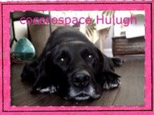 $★ cocoro space Hulugh ★-image