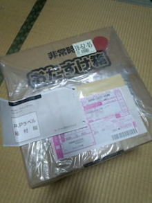 どんの日記-FJ3137340001.jpg