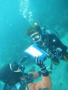$レンタル器材でライセンス取得!7割が女性のダイビング教室:横浜校