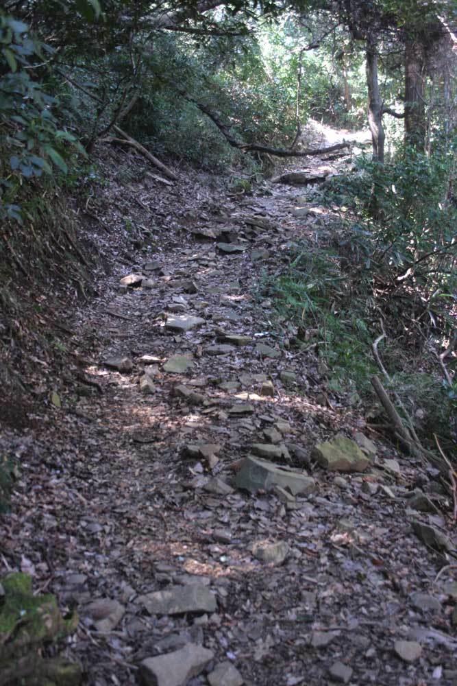 湯坂城/石畳の道