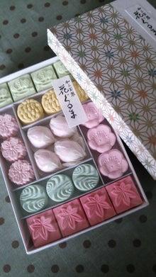 オカメインコのももちゃんと花教室と旅日記-DSC_0081.JPG
