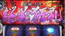 札幌回胴式遊戯専門学校-桜花狂乱