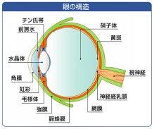 よしこ眼科クリニックのブログ