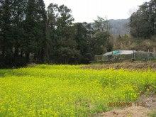 第2養蜂場5