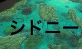 $HitMe(′З`)-シドニー旅