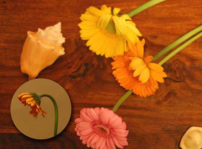 おかむら準備室のブログ