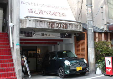 $新大阪・西中島南方にある猫カフェ♪「猫の箱」のブログへようこそ!