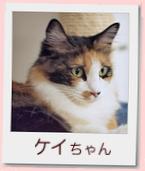 05_prof_ケイ