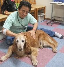 前川治療院のブログ