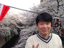 こうちゃんの営業日記-桜1