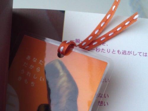 作家 吉井春樹 366の手紙。-初回特典の年下オトコ