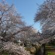 また春がめぐってきま…
