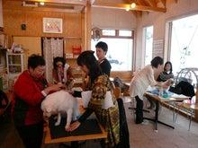 札幌:犬マッサージとアロマ。身体元気・こころ満足の笑顔に出会える!