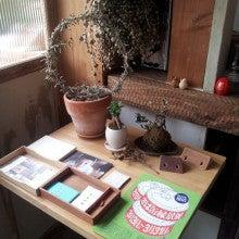 ILOVECURRYのブログ-anamocafe