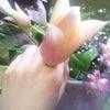 かわい☆の画像