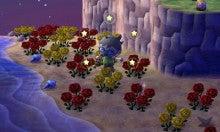 へたれちゃんの罰ゲームライフ  ~とびだせどうぶつの森・攻略法~-青いバラの作り方