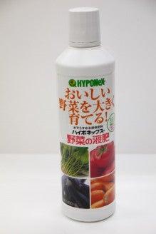 大好き☆ベランダ菜園-ハイポネックス野菜用