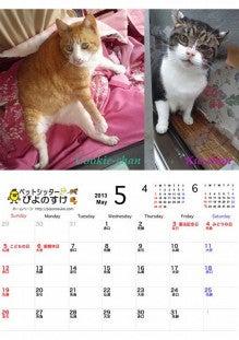 横浜のペットシッターぴよのすけのブログ-Piyonosuke2013_05_small.jpg