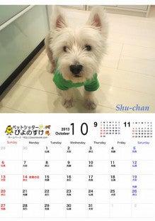 横浜のペットシッターぴよのすけのブログ-Piyonosuke2013_10_small.jpg