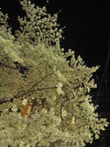 DAISY*DIARY-木屋町4