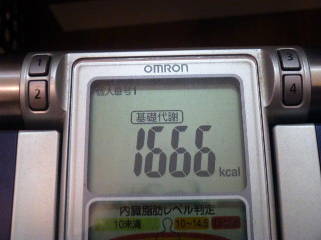 130331基礎代謝