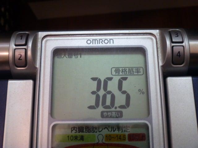 130331骨格筋