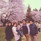 葉桜かの記事より