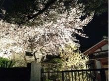 ぽんのブログ-image09.jpg
