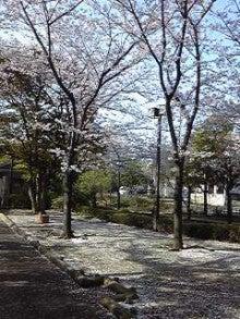 すがさわ整骨院のブログ-130401_0755~01.jpg