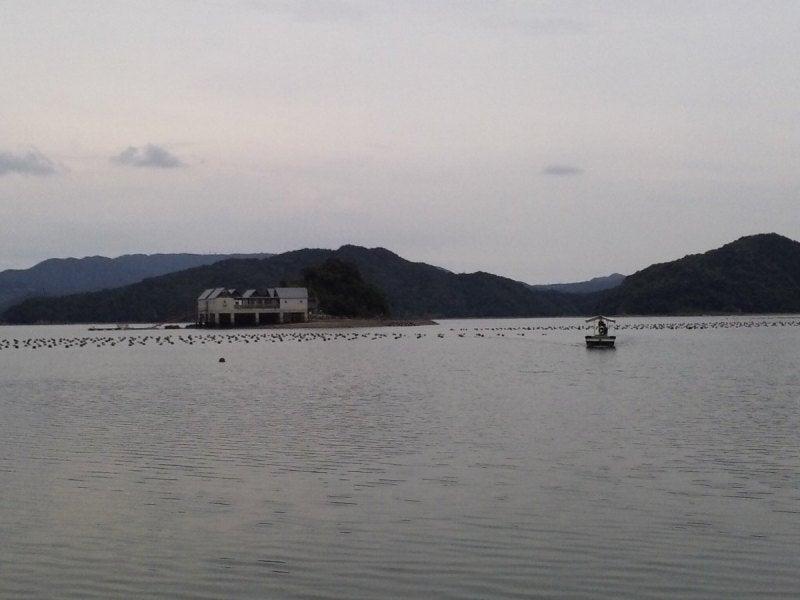コテージ 河浦 海上