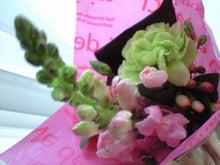 ずれずれブログ…湘南で猫と暮らせば…-CA390862.JPG