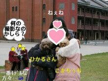 あっち★こっち★こまち♪U^ェ^U-IMGP4134.jpg