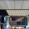 新しくなった渋谷駅。の画像