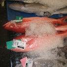 魚市場シリーズ 第2弾の記事より