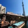 【スナップ】東京すか…
