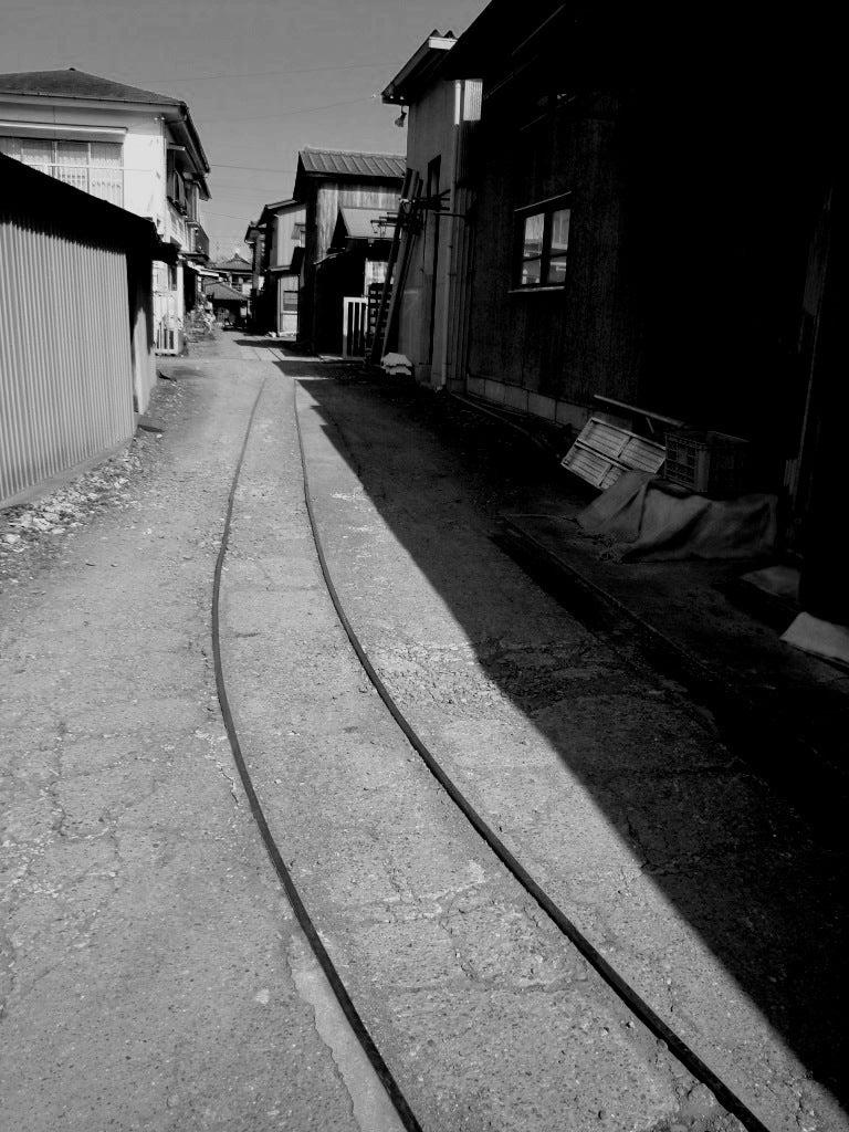 ~幸手権現堂堤の桜は3分落ち♪・TMO幸手(幸手市商工会)~-横丁鉄道・真壁