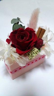 svasti-roseのブログ☆~風の吹くまま、気の向くまま~-DCIM1228.jpg