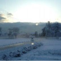 松本は今日も雪。