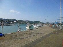 $鵜戸倶楽部うみがめ隊のブログ-富土漁港