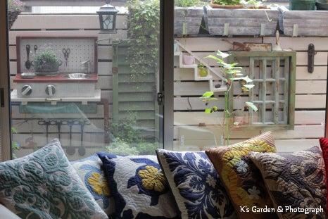$K's Garden & Photograph
