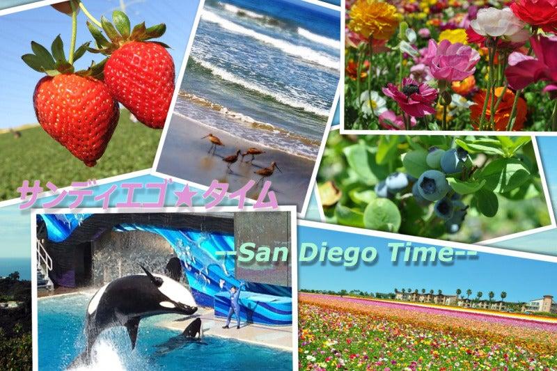 $サンディエゴ★タイム -- San Diego Time--
