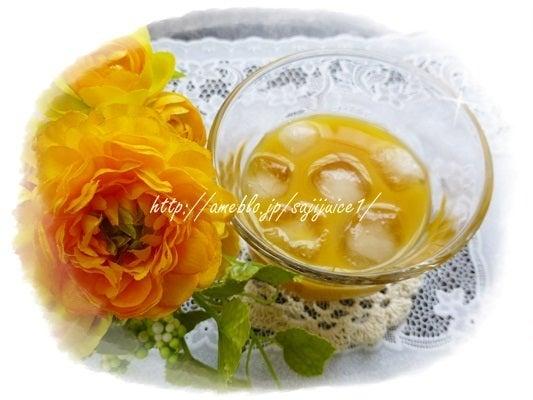 フィネスこうさんじるサジージュース通販のおいしい飲み方クチコミ-ゆず蜜とろり