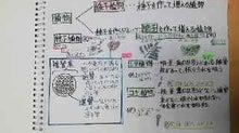 畑とねこと子どもたちと3-shokubutsu-bunrui1
