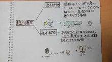 畑とねこと子どもたちと3-shokubutsu-bunrui2